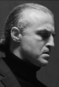 Actor Dan Badarau, filmography.