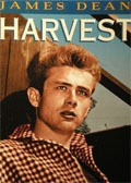 Harvest pictures.