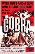 Il cobra pictures.