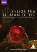 Inside the Human Body pictures.