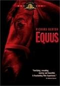 Equus pictures.