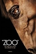 Zoo - wallpapers.