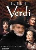 Verdi - wallpapers.