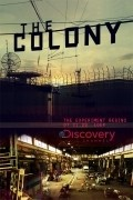 The Colony - wallpapers.