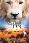 White Lion pictures.