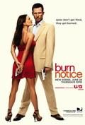 Burn Notice - wallpapers.