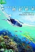 Great Barrier Reef - wallpapers.