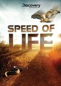 Speed of Life pictures.