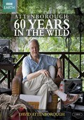 Attenborough: 60 Years in the Wild - wallpapers.