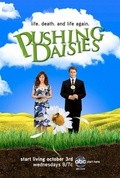 Pushing Daisies pictures.