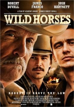 Wild Horses - wallpapers.