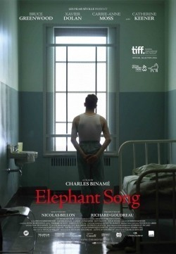 Elephant Song - wallpapers.
