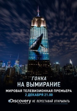 Racing Extinction - wallpapers.