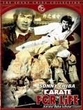 Karate baka ichidai - wallpapers.