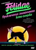 Felidae pictures.