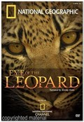 Eye of the Leopard - wallpapers.