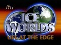 Ice Worlds. Life at the Edge - wallpapers.