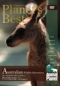 Animal Planet: Australian Wildlife Encounters - wallpapers.