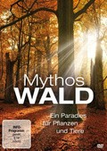 Mythos Wald - wallpapers.