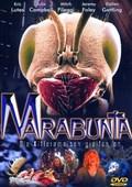 Marabunta pictures.