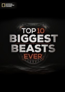 Top-10 Biggest Beasts Ever pictures.
