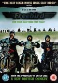 Freebird - wallpapers.